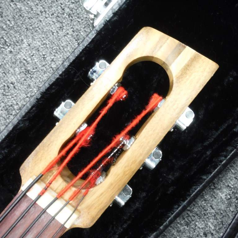 no longer available 2006 wishbass 5 string bass. Black Bedroom Furniture Sets. Home Design Ideas