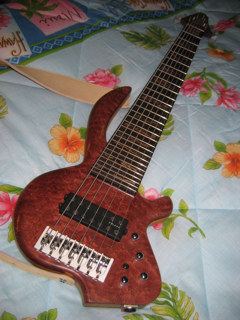 20071227-fretted7-04.