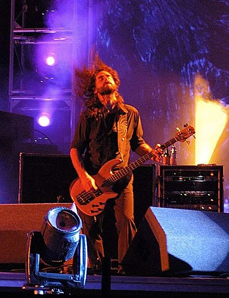 460px-Justin_chancellor_tool_roskilde_festival_2006_cropped.