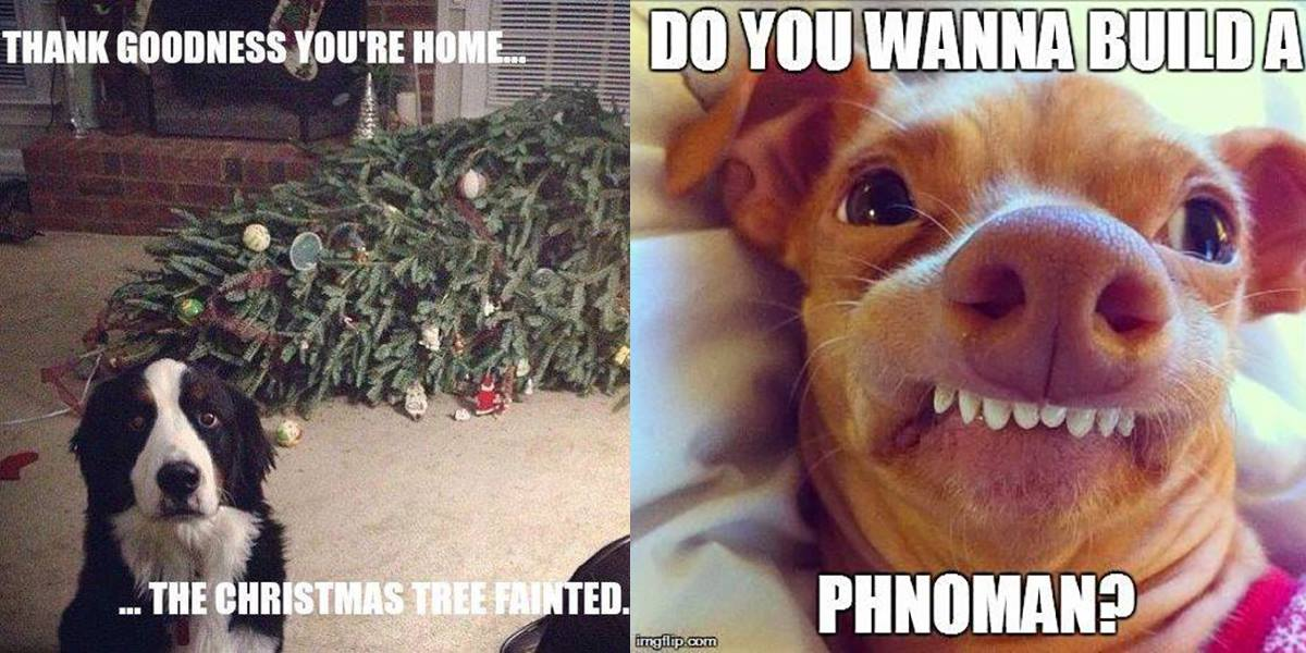 Funniest Christmas Memes.Funny Christmas Memes Page 2 Talkbass Com