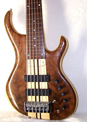 6-string-nt-fretless-front-small.