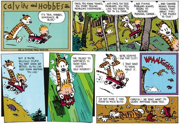 calvin-and-hobbes-bliss-small.