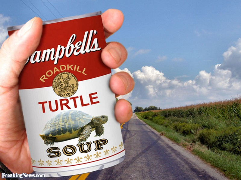 Campbell-s-Turtle-Soup--74122.