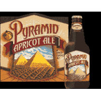fddkBeersBy_NamePyramid_Apricot_Ale-resized200.