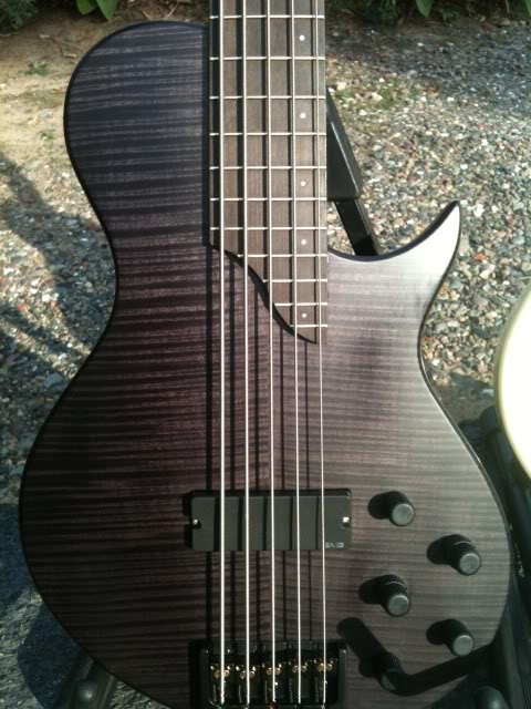 fretted5a.