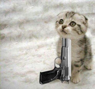 Funny+Cats+With+Gun3.jpg
