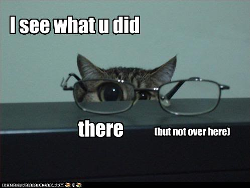 funny-pictures-cat-has-glasses.