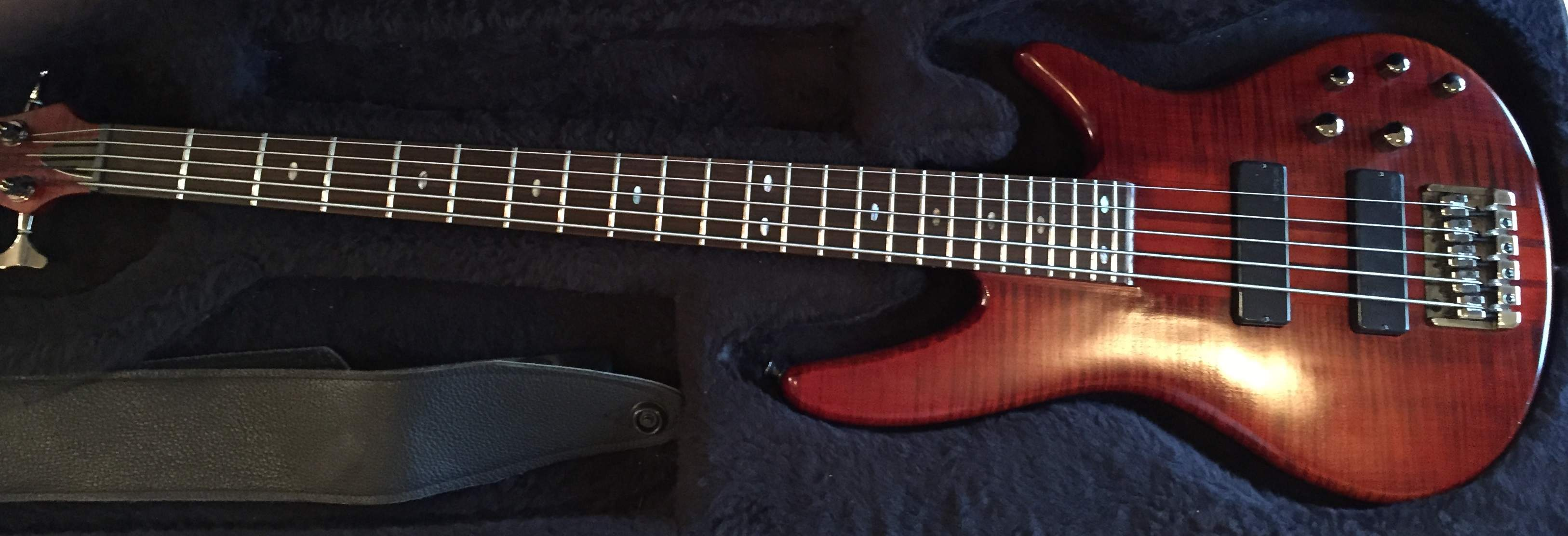 Ibanez in Case with Leather Strap.JPG