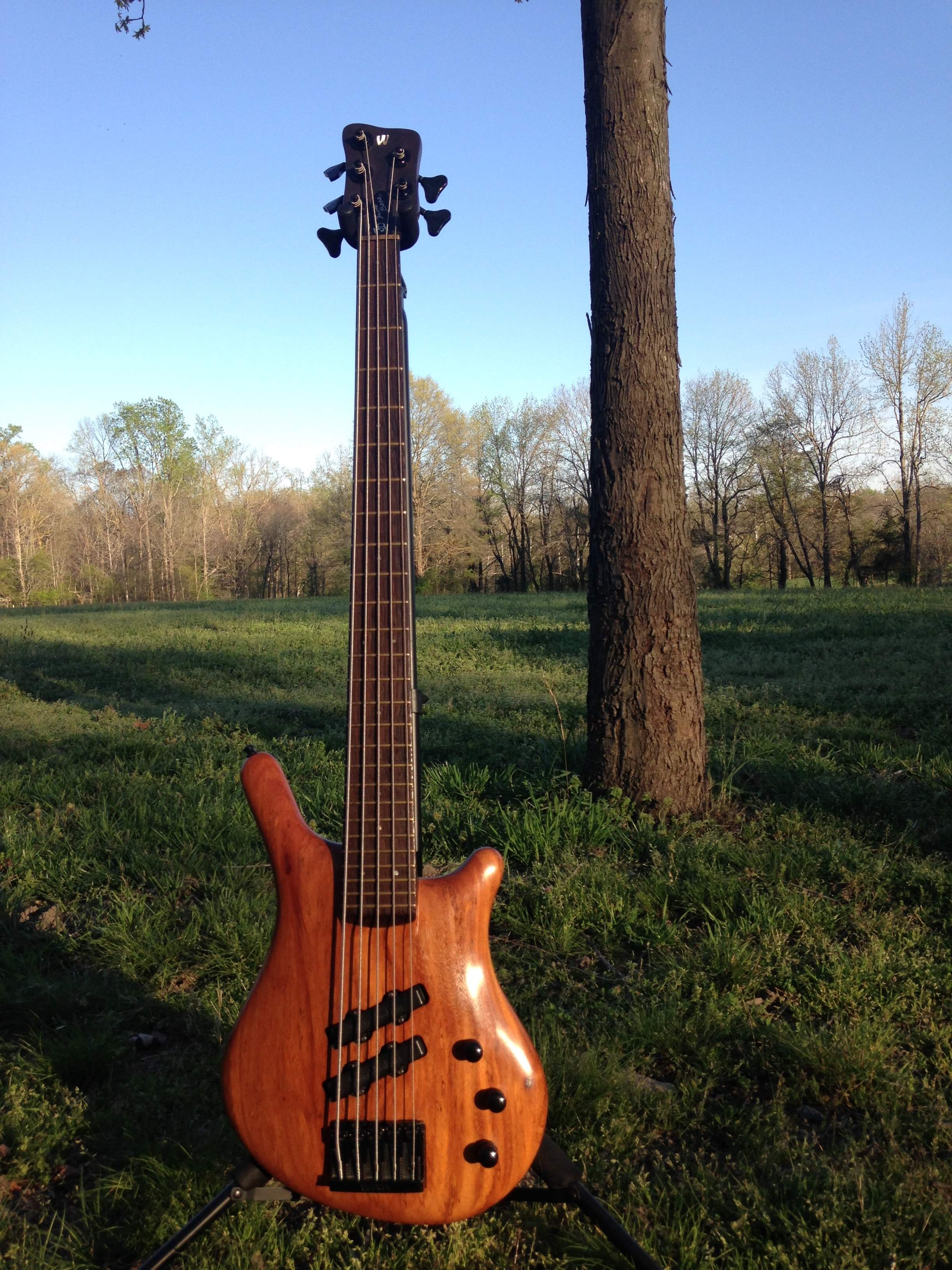 sold very rare 1986 warwick jd thumb bass 5 string picture heavy. Black Bedroom Furniture Sets. Home Design Ideas