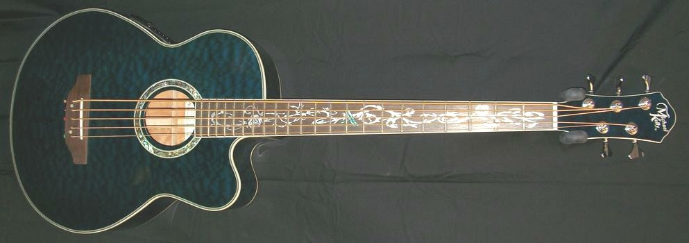 MichaelKellyDragonfly5StringAcousticBass1.