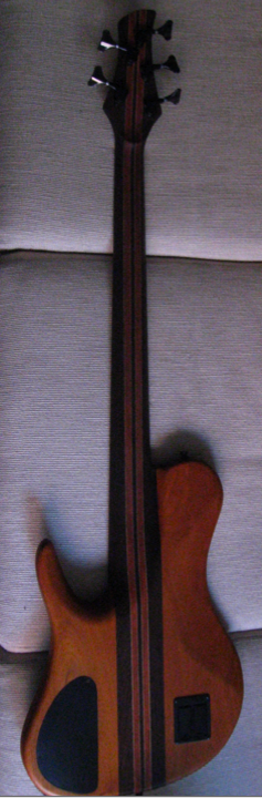 Morch_SingleCut5-Fretless-Back.