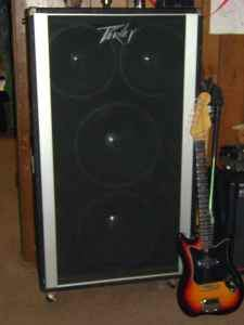 Anyone heard of 80's Peavey 2x12 & 2x15 in one bass cabinet? Deal ...