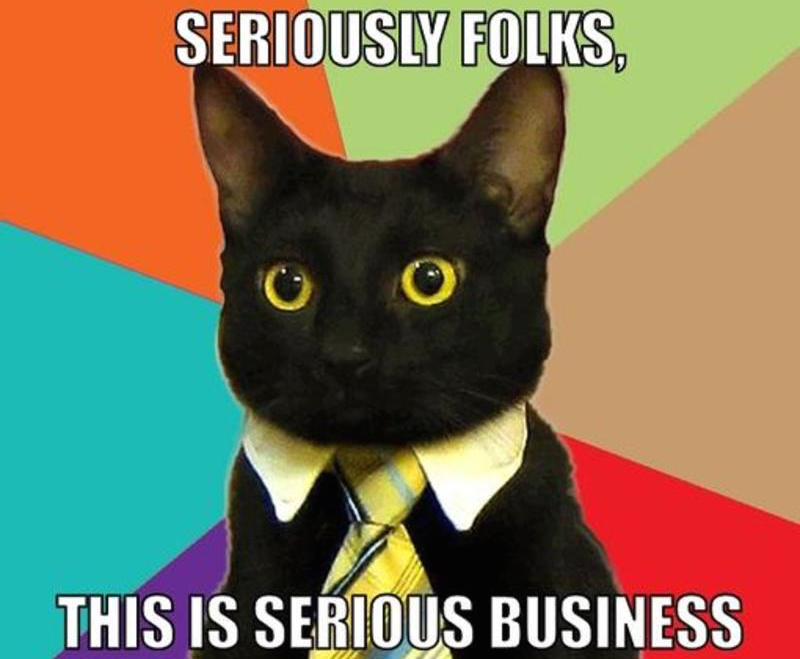 resized_business-cat-meme-generator-seriously-folks-this-is-serious-business-d31d3d.jpg