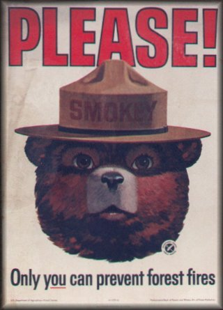smokey-the-bear-classic.