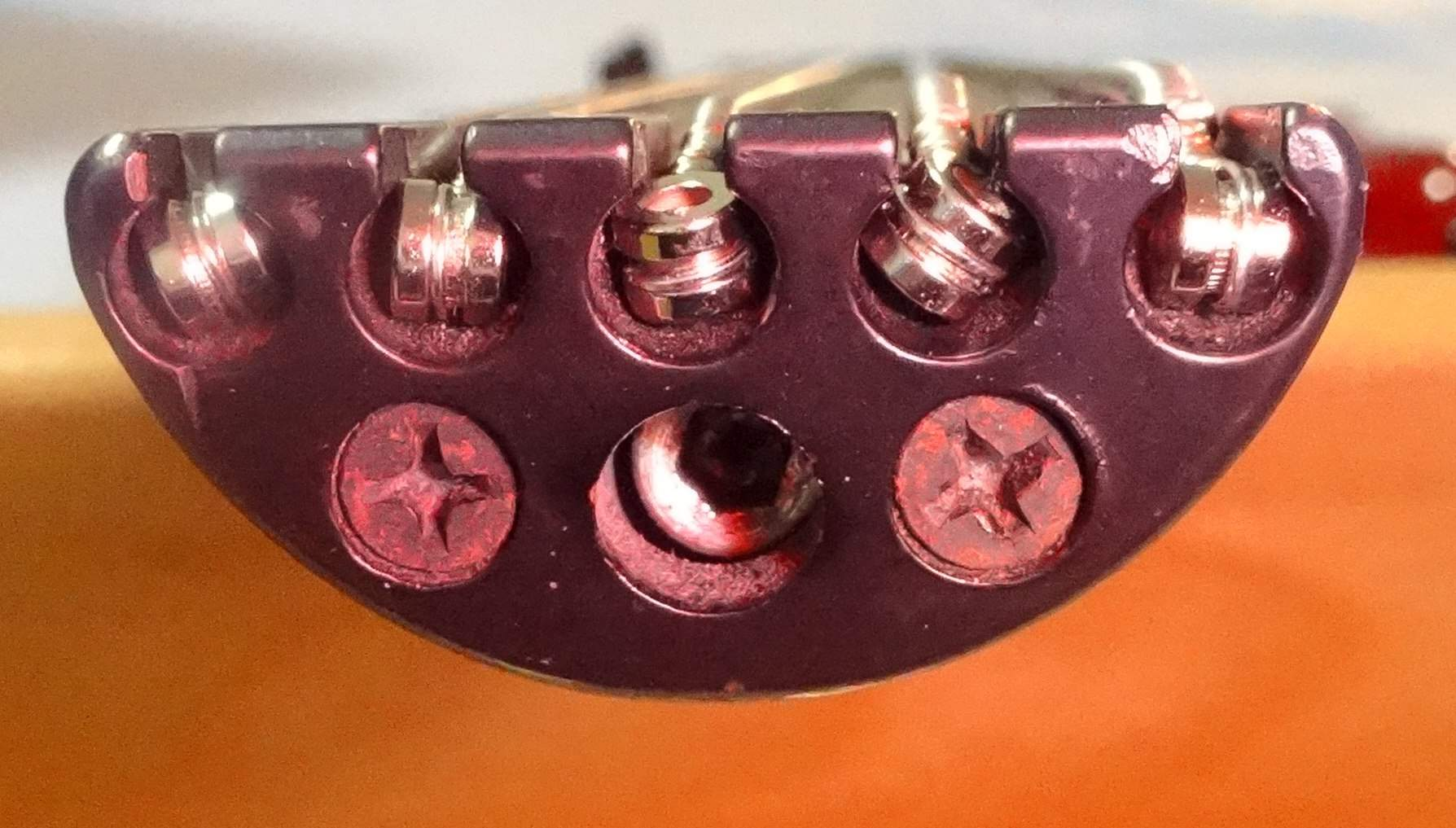 Steinberger Moses Head-Piece.