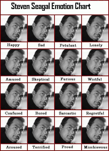 Steven_Seagal_Emotion_Chart.