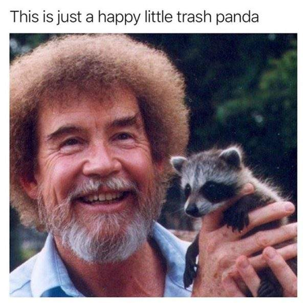 This-is-just-a-happy-little-trash-panda-1024x1024.jpg