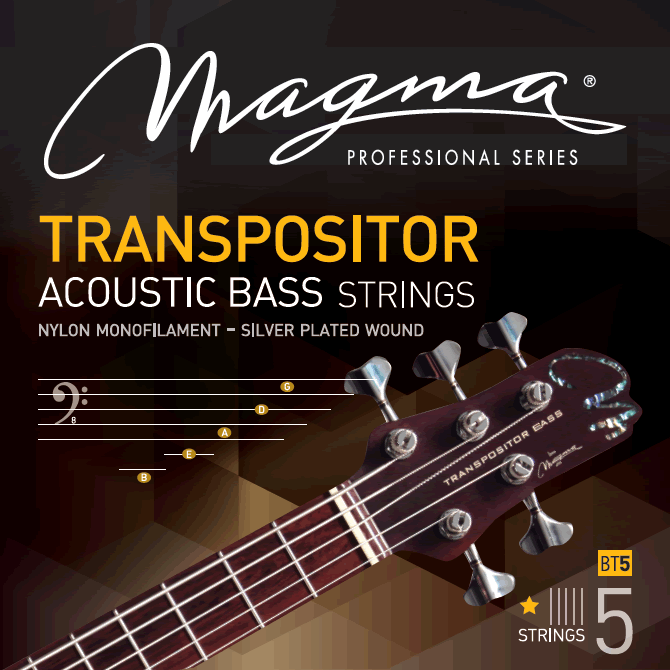 Transpositor strings.png