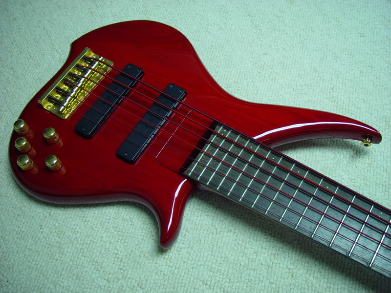 Lets See Your Basses With Colored Strings Talkbass Com