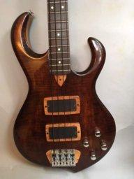 electrobass55