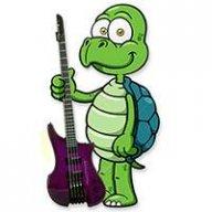 Bass Turtle