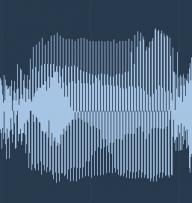 loud bassist