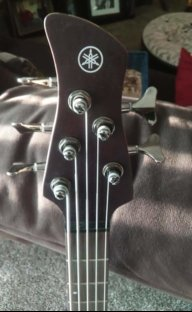 Bassface65