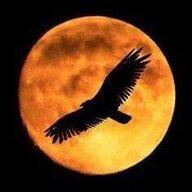 EagleMoon